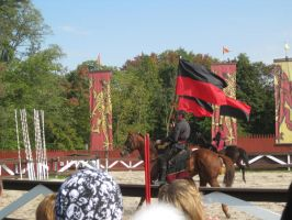 Joust Opening Ceremonies 2 by ChaosToGlory