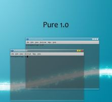 Pure 1.0 beryl theme by astoyanov