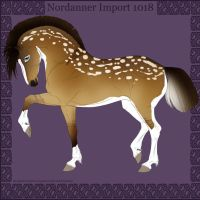 1018 Group Horse Import by Cloudrunner64