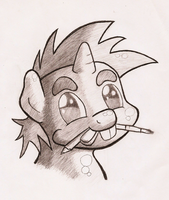 Traditional Artist Snips by shoeunit
