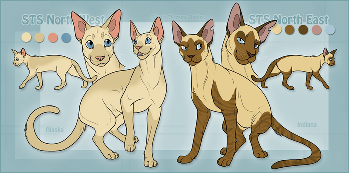 STS Cats- Alli and Indy by ShockTherapyStables