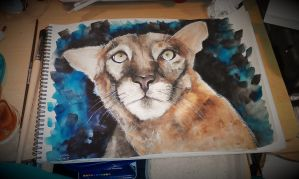Watercolor Panther by elenoosh