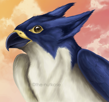 Peregrine by The-Nutkase