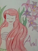 ariel color finish by Artlover916