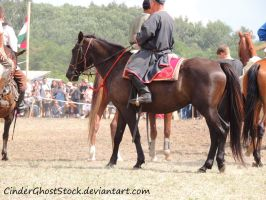 Hungarian Festival Stock 048 by CinderGhostStock