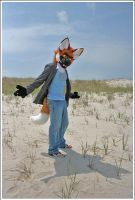 Maned Wolf on the dunes by jillcostumes