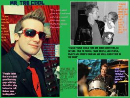 Tre Cool Wallpaper by katfrostfur