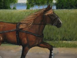Finnish horse painting Detail2 by Garbuend
