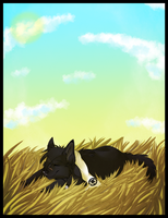 A peaceful nap SPEED DRAW by Mishamutt