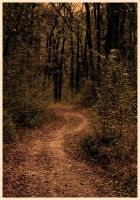 the path to my autumn by JordanRobin