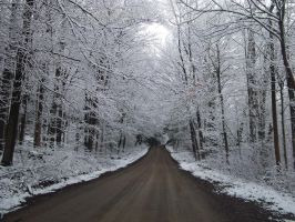 Chilled Road by Amikwa