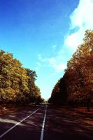 Warsaw 113 autumn by remigiuszScout