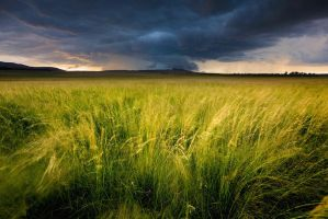 Praire Storm by hougaard