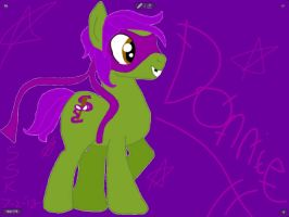 TMNT '13 ponies: Donatello aka Donnie by SonicSailorKeyblade