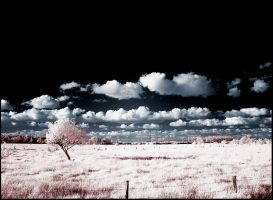 Clouds infrared... by MichiLauke