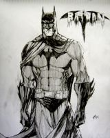 Batman by spiderson5000