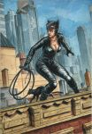 Catwoman On A Roof by NDemare