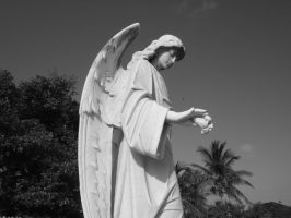 Cemetary in Key West 0026 by Selficide-Stock