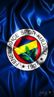 Fenerbahce Wallpaper by ozturkdesign