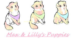 For HolliKyo Max and Lilly's Puppies by SierraSweet
