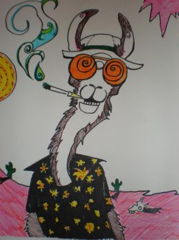 Fear and loathing llama by SushiKat