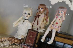 Dollmeet Fat Dragon: Group by darknaito