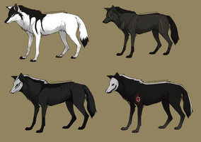 Wolf Adopts 13 by Fells-Adopts