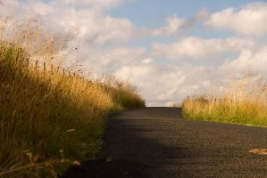 Northumbrian Track by parallel-pam