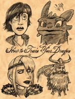 How To Train Your Dragon 1 by Shmivv