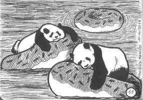 Inktober day 11: Sleepy pandas on floating donuts by dreamsaddict