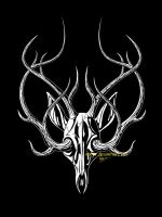 skull and antlers by morjia