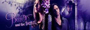 Beauty and the beast CW by 999Anaida