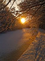 Just a Winter walk 17 by photonig