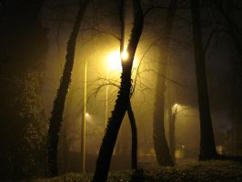 foggy night by lollotek