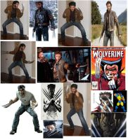 Wolverine Cosplay Collage by IronCobraAM