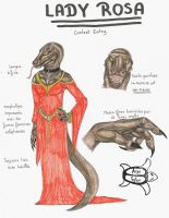 Contest - Lady Rosa by Aspi-Galou