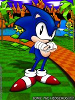 Classic Series, Sonic by Alforata