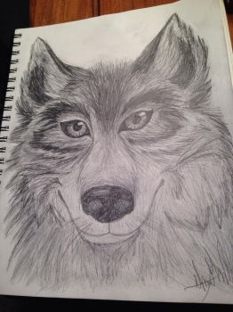 Wolf Pencil Sketch by LionKingWarriors561