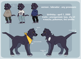 Vern Ref | 2017 by seihes