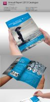 Annual Report Brochure Indesign Template by BraxasMora