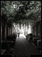 The Sorrowful Path by can16358p