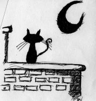 cat in the moon light by PsychedelicOctopuss