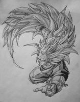 Goku Super Saiyan 3 by DarkSky666