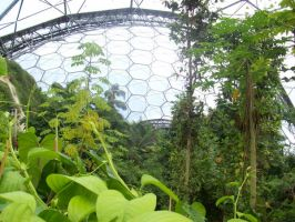 The Eden Project 21 by Kuroii-stock