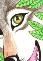 ACEO 4 - NightWolf face by LuthienNightwolf