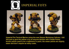Imperial Fist Tester by Anararion