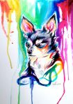 Rainbow Dog :D by Lucky978