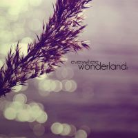 i193 - everywhere wonderland by SlevinAaron