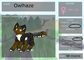 WOTP Application Sheet - Owlhaze by Sketchi-Kitty
