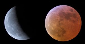 Moon Eclipse 4 by Chris350D